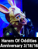 harem of oddities